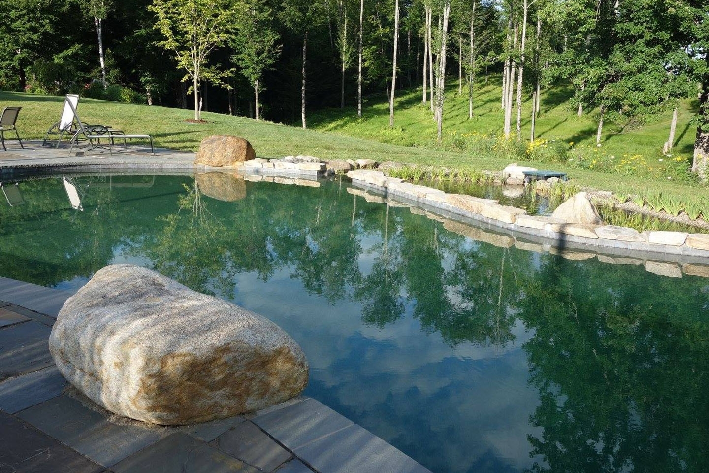 swimming ponds and natural swimming pools USA
