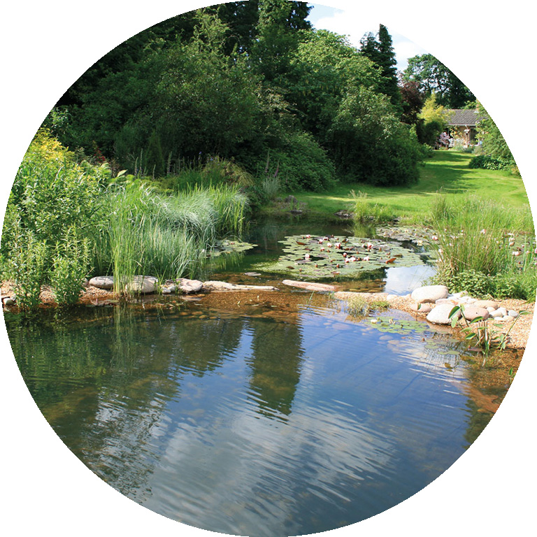 Gartenart Swimming Ponds And Natural Swimming Pools