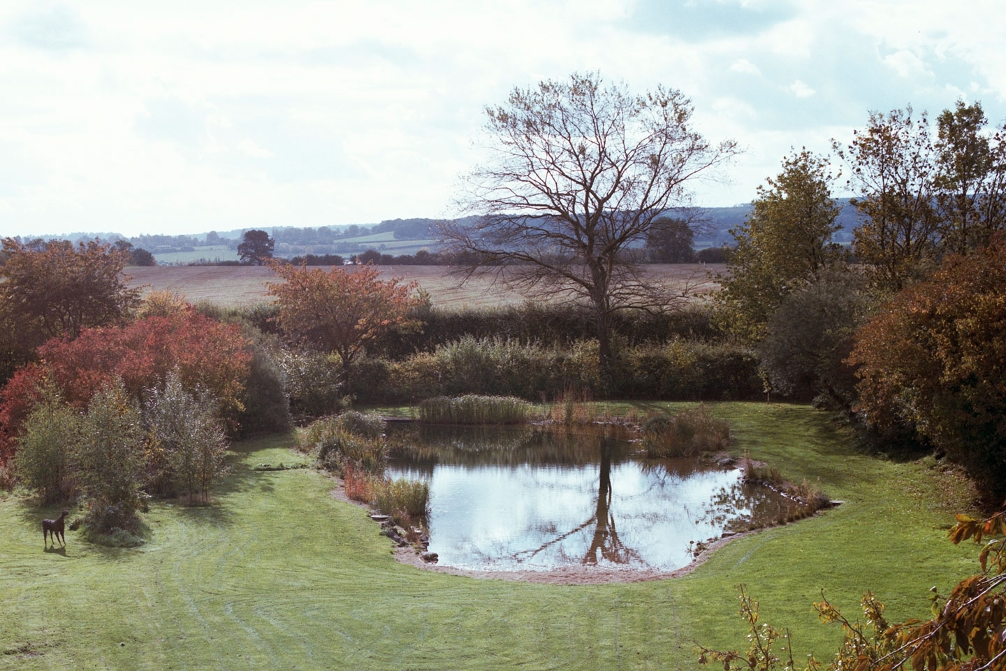 Gartenart | Portfolio | Swimming pond conversion, Bedfordshire