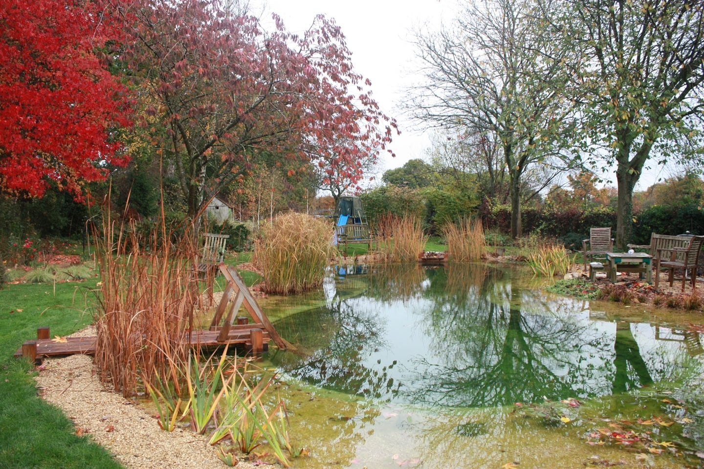 Swimming ponds and natural swimming pools, Hampshire