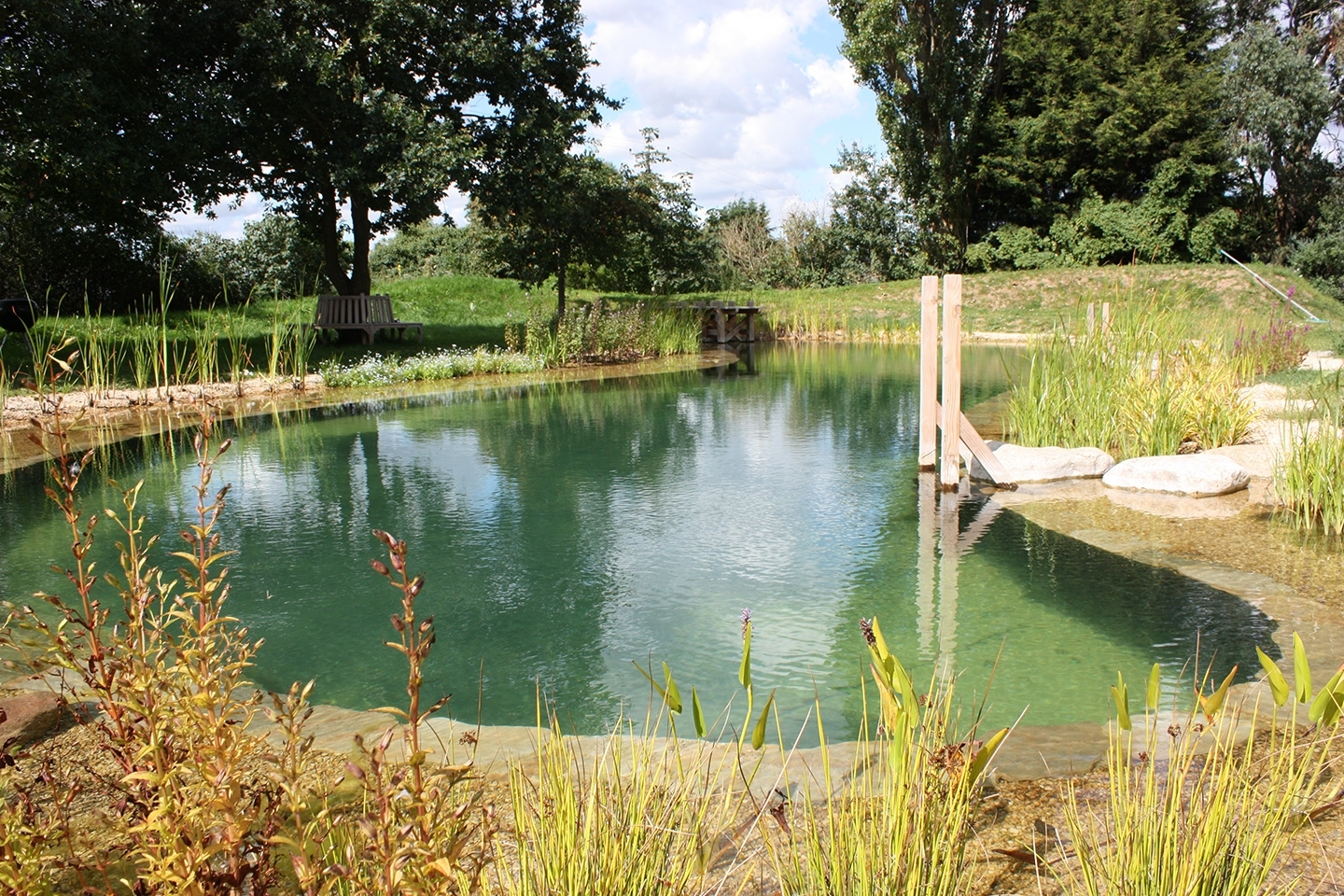 Swimming pond in Suffolk